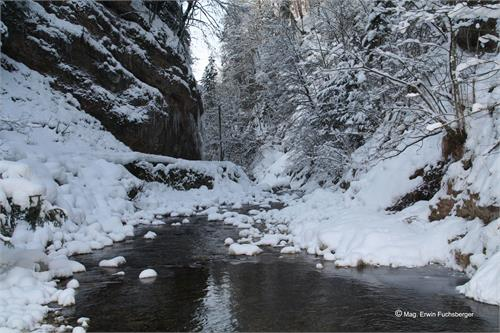 Winter hike Glasenbachklamm | Elsbethen